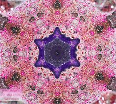 Magic der Tageszahlen Transformation 17.6.2016 = 23 | 5 | 5 | 32 Die Vorbereitung in der 17 ist heut im Einfluss 1 + 7 = 8 und die Energie ist in der Tat im Thema Macht. Die Zartheit in feinstofflichen Energien verbindet sich in und über das x so finden sich in der weiblichen Kraft des inneren Gedanken die Lokerheit des deinigen Sein um dass der Kommunikationfluss rege ausgetauscht ist.  Ein optimaler und magischen Tag wünsche ich dir  spirit of your magic Inspiration by © www.schellauf.ch
