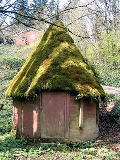 I want to build an elf house like this out in the woods behind the house... mossy roof and all!! maybe it's just the moss i like. the house is too small. yep. its the moss.