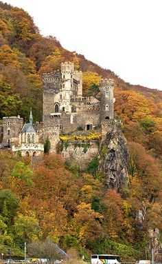 Castle Rheinstein, Rhein River, Germany We took the train from Amsterdam to Munich following the Rhein for part of the journey.  Gorgeous nature scenery and picturesque castles (most were in ruins.)