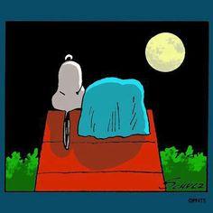 Goodnight Snoopy!