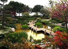 """Результат пошуку зображень за запитом """"японський сад"""""""