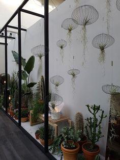 An urban jungle with NTRLK and Carolijn Slottje