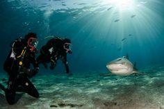Scuba Diver Girls | Blog