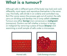 A diagram comparing normal cells to cells forming a tumor #cancerfacts