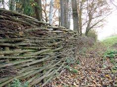 Wattle Fence, Wattle And Daub, Fences, Vine Fence, Willow Fence, Diy Garden Fence, Gnome Garden, Natural Fence, Urban Farming