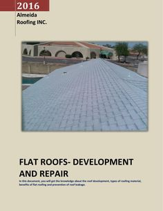FLAT ROOFS  DEVELOPMENT AND REPAIR