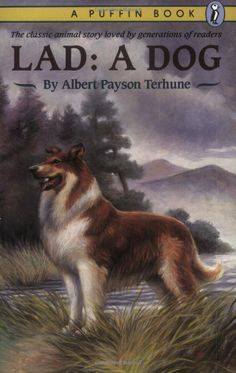 Lad: A Dog  By Albert Payson Terhune. ctsuddeth.com
