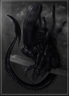Alien - ''Alien's Perch'' - nanya ----