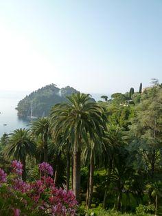 """Panorama, Camera di """"Hotel Splendito"""", Portofino Liguria Italia (Luglio)"""