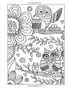 More Eclectic Owls An Adult Coloring Book Books Volume
