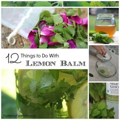 12 Amazing Things to Do With Lemon Balm. As a medicinal plant, lemon balm has traditionally been employed against bronchial inflammation, earache, fever, flatulence, headaches, high blood pressure, influenza, mood disorders, palpitations, toothache and vomiting.