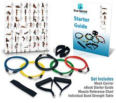 Resistance Bands Set - Exercise Bands -  11 Piece Set: Five Hypoallergenic Latex Bands, Two High-Density Foam Handles, Door Anchor, Two Ankle Straps and a Mesh Carrier for Maximum Breathability - FREE Instructional Handbook Included