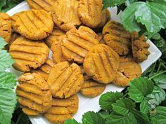 (gluten, wheat and dairy-free, vegan, vegetarian) peanut butter pumpkin dog treat/biscuit recipe