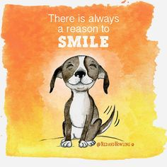 There Is Always A Reason To Smile – Red and Howling Pet Dogs, Dogs And Puppies, Dog Cat, Doggies, I Love Dogs, Puppy Love, Tiny Dog Breeds, Cartoon Dog, Dog Cartoons
