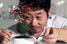 A miniature tree hovers in the air over its pot, unsupported, in a scene that mixes an ancient Japanese art with sci-fi effects. In fact, the pot that comes with this particular bonsai plant kit isn't even designed to hold soil. Instead, it contains a powerful magnet that keeps the moss-covere ...