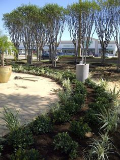 Commercial landscaping.