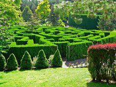 The hedge maze at VanDusen Botanical Garden in Vancouver, Canada. Organic Gardening, Gardening Tips, Indoor Gardening, Beautiful Gardens, Beautiful Flowers, Labyrinth Maze, Magazine Deco, Parks, Decoration Entree