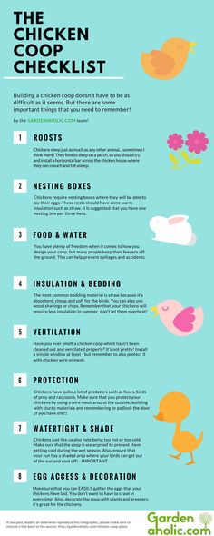 Control your own food supply with backyard chickens. Quickly learn what your chickens need with this handy Chicken Coop Checklist Infographic. You