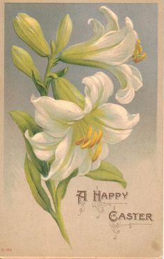A Happy Easter Lily Flower Vintage Postcard by OldFangledFinds, $4.00