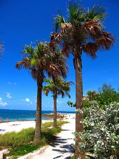 Fort Zachary Taylor Historic State Park, Key West - Florida