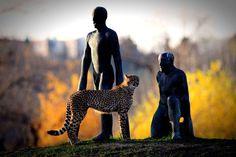 Les bergers des guépards de Michal Gabriel au zoo de Prague