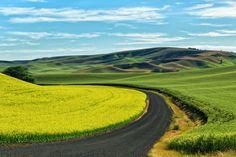Follow the path to Palouse, USA