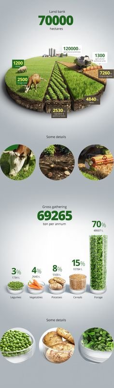 Agricultural infographics
