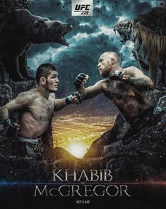 Combat Training, Boxing Training, Mma Boxing, Boxing News, Conor Mcgregor Poster, Hakuna Matata Quotes, Boxing Posters, Fan Poster, Ufc Fighters
