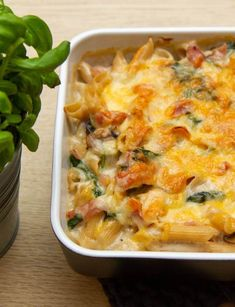Penne, Cheeseburger Chowder, Mashed Potatoes, Macaroni And Cheese, Dinner Recipes, Soup, Ethnic Recipes, Lasagna, Whipped Potatoes