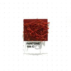 Pantone Swatches, Color Swatches, Pantone Colour Palettes, Pantone Color, Pantone Matching System, Outlast 2, Everyday Objects, Color Theory, Color Pallets