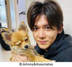 Johnny's Web, Corgi, Animals, Prince, King, Celebrities, Baby, Corgis, Animales