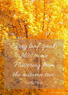 Every leaf speaks bliss to me Fluttering from the autumn tree | http://domesticallyblissful.com/3-fall-quotes/
