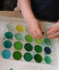 "Two For Blue- ""Experimenting with color: This tray started out as two pools of yellow and two pools of blue. The rest were just water. The artist learned to use a dropper and saw how many colors of green they could make"