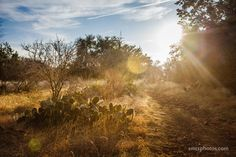 Late Afternoon on Dante's Trail | San Marcos, TX