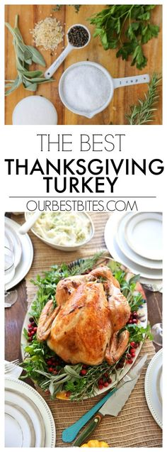 For all of you who are making the big Thanksgiving turkey or thinking of making the turkey or dreaming of making the turkey, this one's for you–the OBB turkey that people fall in love with year after year. #OurBestBites #Turkey #Thanksgiving #ThanksgivingDinner #Thanksgiving Recipes #ChristmasTurkey #ChristmasDinner Thanksgiving Turkey, Thanksgiving Recipes, Holiday Recipes, Great Recipes, Dinner Recipes, Favorite Recipes, Holiday Meals, Amazing Recipes, Yummy Recipes