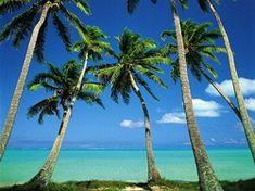 10 Secrets to Booking Cheap Airfare to Costa Rica 08/30/2013