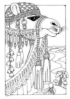 free Coloring page Camel                                                                                                                                                      Más