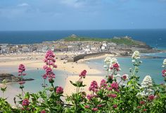 St. Ives through pink valerian flowers    A beautiful day in St. Ives. The sea and sky were perfect shades of aquamarine and Cornish blue ...    Harbour beach, St. Ives, Cornwall  Taken from Hain Walk coast path