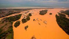 Menos de 3% das multas ambientais cobradas no Brasil são pagas - http://controversia.com.br/22259