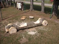 First tree to fall down in my yard gets this done to it (bonus: it's art & a playground, not refuse we left in the yard)