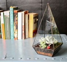 Make a small monument of your house plants by putting them inside this clear glass obelisk.