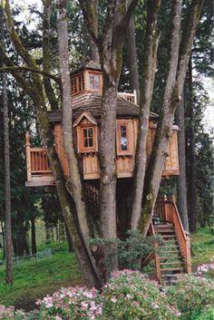 even better Oregon treehouse.