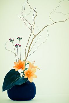 "Ikebana ~ The art of Japanese flower arranging ~ by CaDs ~ Miks' Pics ""Artsy Fartsy ll"" board @ http://www.pinterest.com/msmgish/artsy-fartsy-ll/"