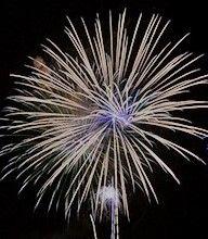 Fireworks Art, Dandelion, Flowers, Dandelions, Taraxacum Officinale, Royal Icing Flowers, Flower, Florals, Floral