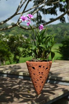 Time To Replace Those Unsightly Plastic Planters. Handmade From High-Fired, Weather-Resistant Terracotta, These Additions To Our Orchid Planter Collection Pr Orchid Planters, Plastic Planters, Orchid Pot, Orchids Garden, Poured Concrete Patio, Concrete Pavers, Stained Concrete, Mini Orquideas, Hanging Orchid