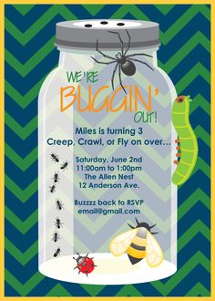 Bugs Insect Birthday Party Invitation
