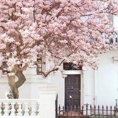Destination envy ; we #love Notting Hill  @keepsakethelabel #keepsake