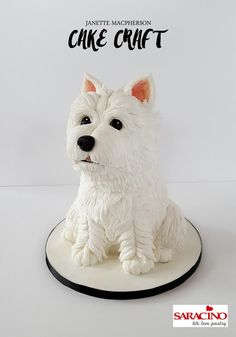 3D Westie dog cake - Cake by Janette MacPherson Cake Craft