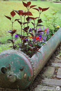planter made from a funky, old hot water heater