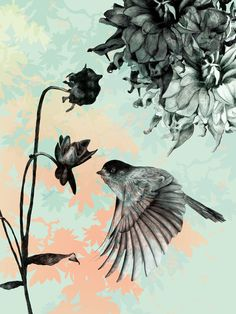 Bird Art Print, A similar effect could be achieved as a drawing.